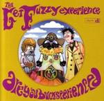 fuzzy-exp-2